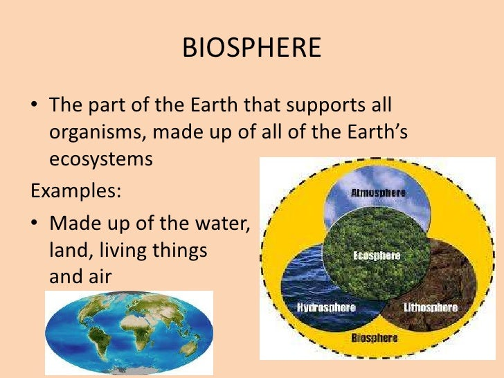 non living organisms examples