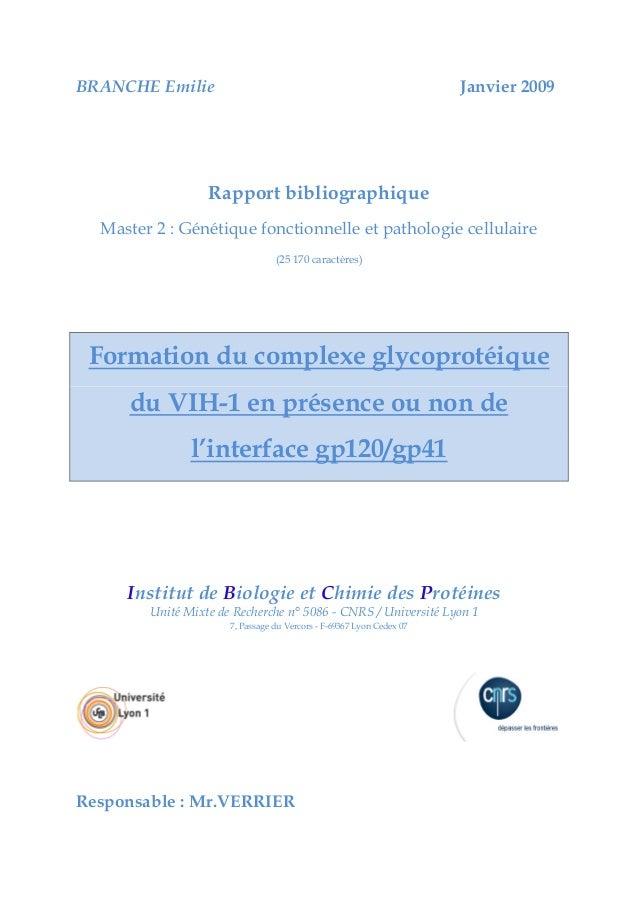 BRANCHE Emilie Janvier 2009 Rapport bibliographique Master 2 : Génétique fonctionnelle et pathologie cellulaire (25 170 ca...