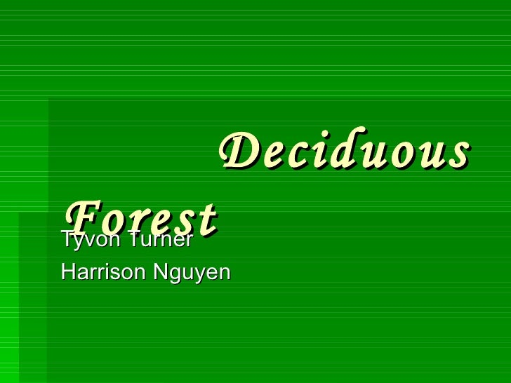 Deciduous Forest   Tyvon Turner Harrison Nguyen