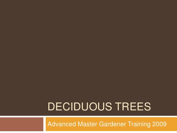 Deciduous trees<br />Advanced Master Gardener Training 2009<br />
