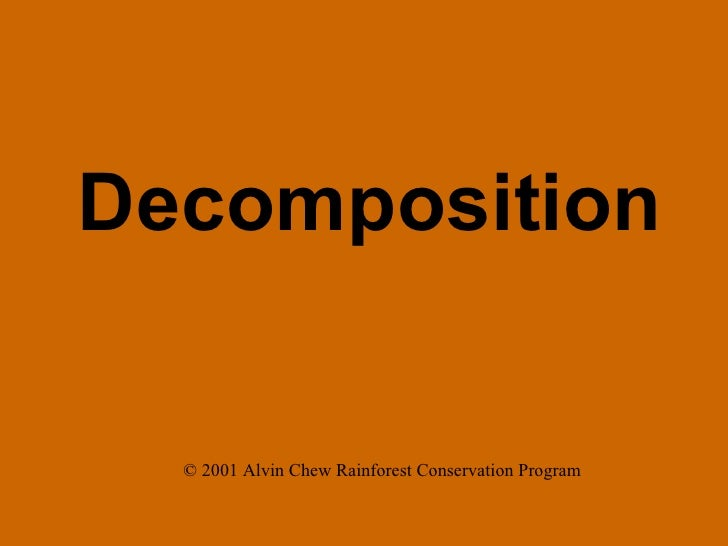Decomposition © 2001 Alvin Chew Rainforest Conservation Program
