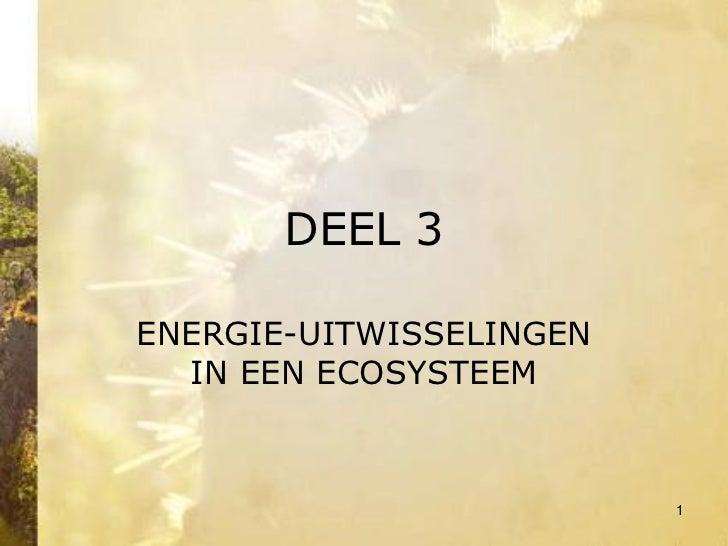 Deel 3 Energie-uitwisselingen in een ecosysteem