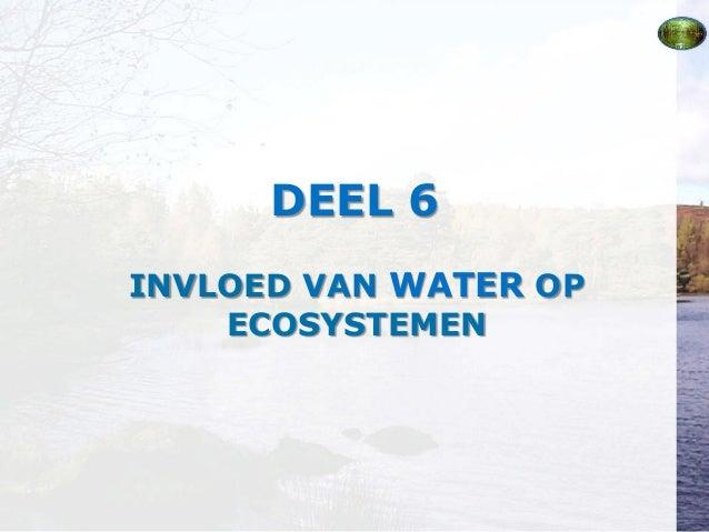 Deel 6 Invloed van water op ecosystemen