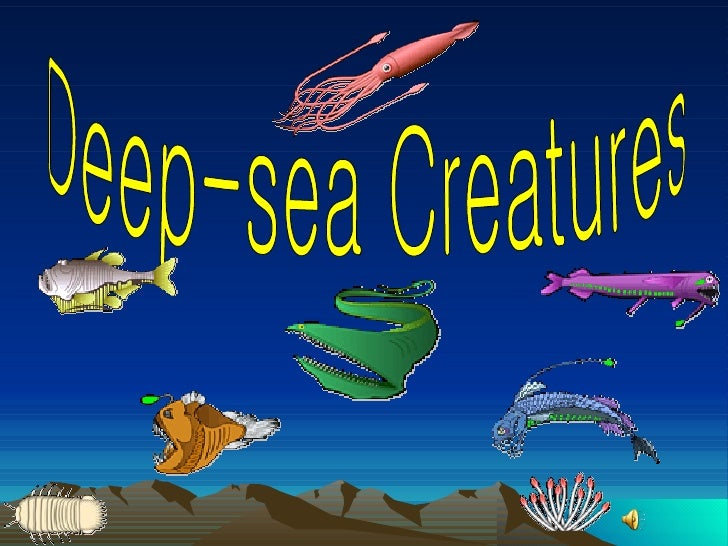 deep sea creatures project essay Find and save ideas about deep sea animals on pinterest | see more ideas about deep sea creatures, deep sea jellyfish and beautiful sea creatures.