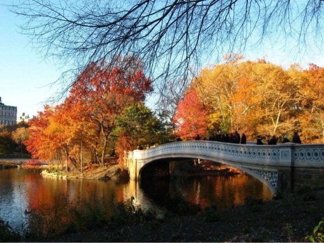 Deep is the Autumn