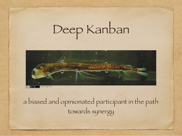Deep Kanban - a biased and opinionated participant in the path towards synergy