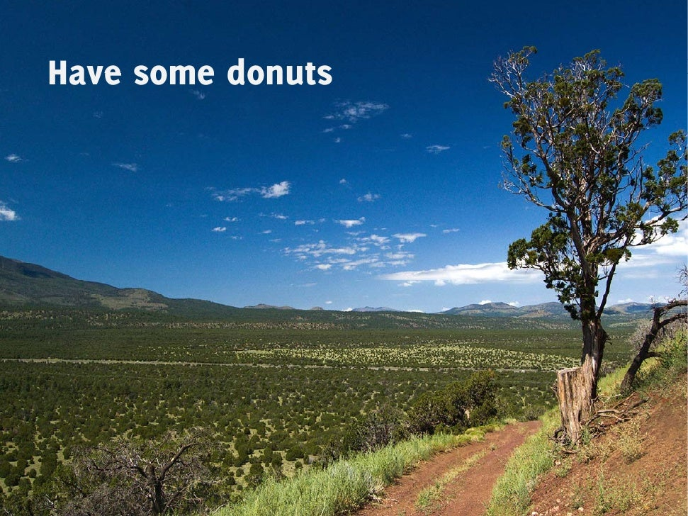 Have some donuts