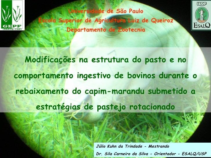 Universidade de São Paulo Escola Superior de Agricultura Luiz de Queiroz Departamento de Zootecnia Modificações na estrutu...