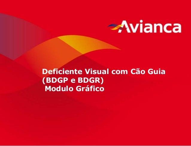 1 Deficiente Visual com Cão Guia (BDGP e BDGR) Modulo Gráfico