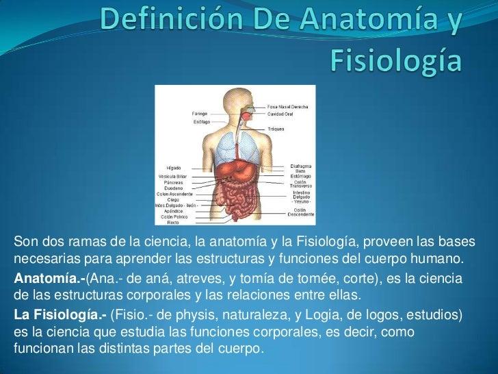 Son dos ramas de la ciencia, la anatomía y la Fisiología, proveen las basesnecesarias para aprender las estructuras y func...
