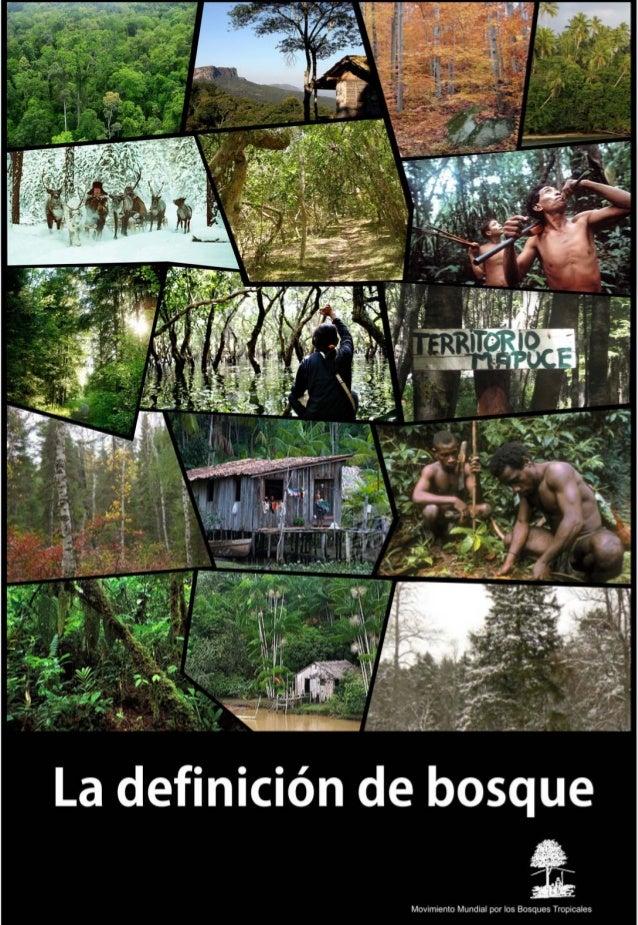 Definicion de bosque