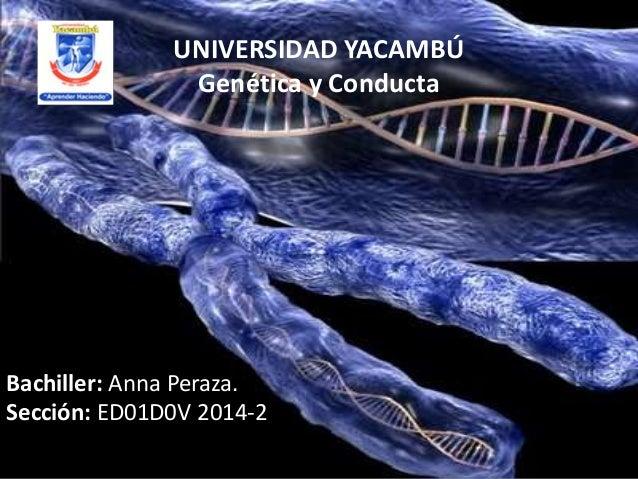 UNIVERSIDAD YACAMBÚ Genética y Conducta Bachiller: Anna Peraza. Sección: ED01D0V 2014-2