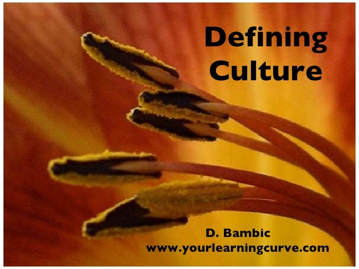 Defining Culture <ul><li>D. Bambic </li></ul><ul><li>www.yourlearningcurve.com </li></ul>