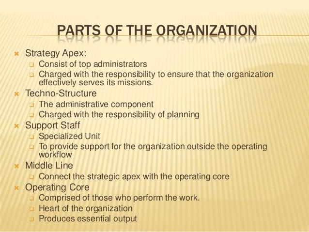 cover letter organizational skills seatle davidjoel co