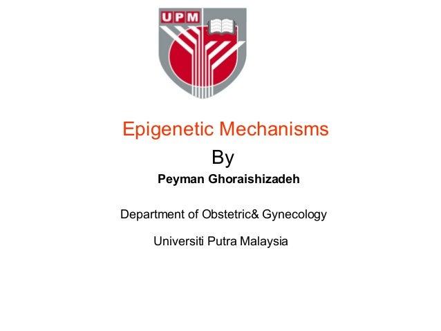 Epigenetic Mechanisms          By      Peyman GhoraishizadehDepartment of Obstetric& Gynecology     Universiti Putra Malay...