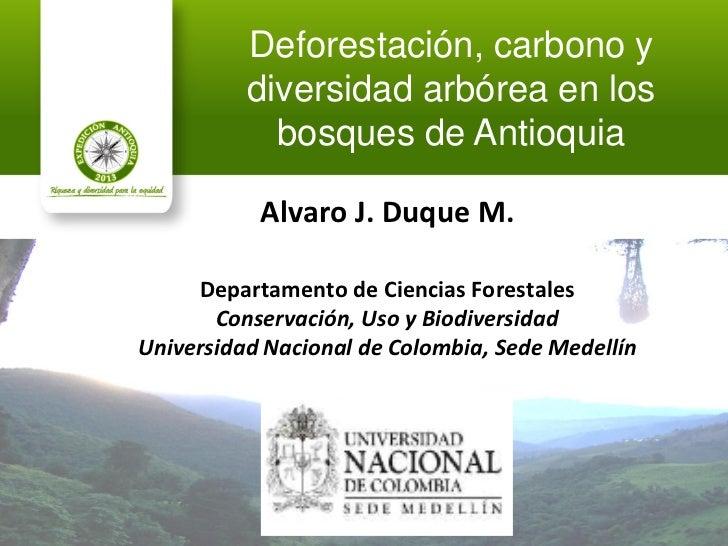 Deforestación, carbono y          diversidad arbórea en los            bosques de Antioquia           Alvaro J. Duque M.  ...
