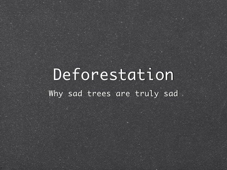 Deforestation Why sad trees are truly sad