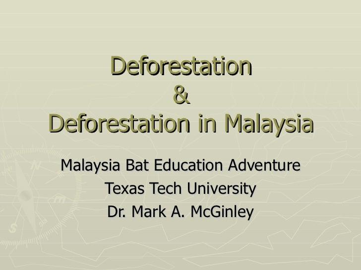 Deforestation            &Deforestation in Malaysia Malaysia Bat Education Adventure      Texas Tech University       Dr. ...