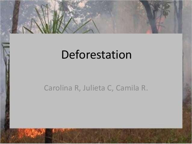 DeforestationCarolina R, Julieta C, Camila R.
