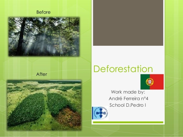 Deforestation Work made by: André Ferreira nº4 School D.Pedro I After Before