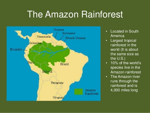 Where Is The Rainforest Located Images - Amazon river location