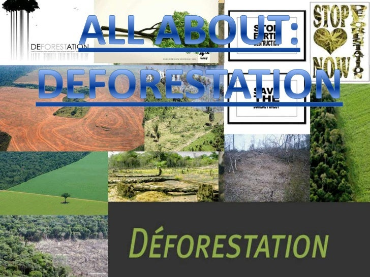 Is the permanent destruction of indigenous forests and woodlands.In other words Deforestation refers to the cutting, clear...