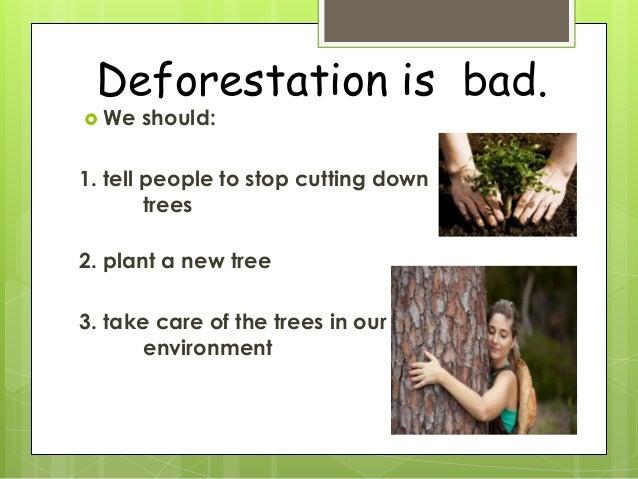 Deforestation Ppt