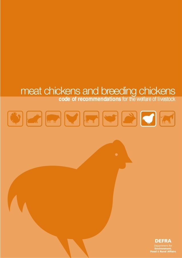 meat chickens and breeding chickens        code of recommendations for the welfare of livestock