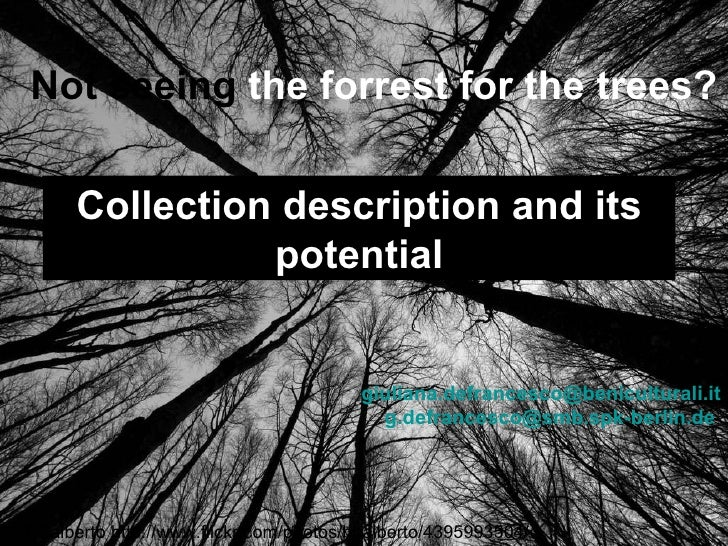 Not seeing the forrest for the trees?        Collection description and its                  potential                    ...
