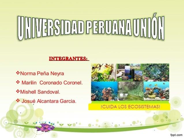 INTEGRANTES:INTEGRANTES: Norma Peña Neyra  Marilin Coronado Coronel. Mishell Sandoval.  Josué Alcantara Garcia.
