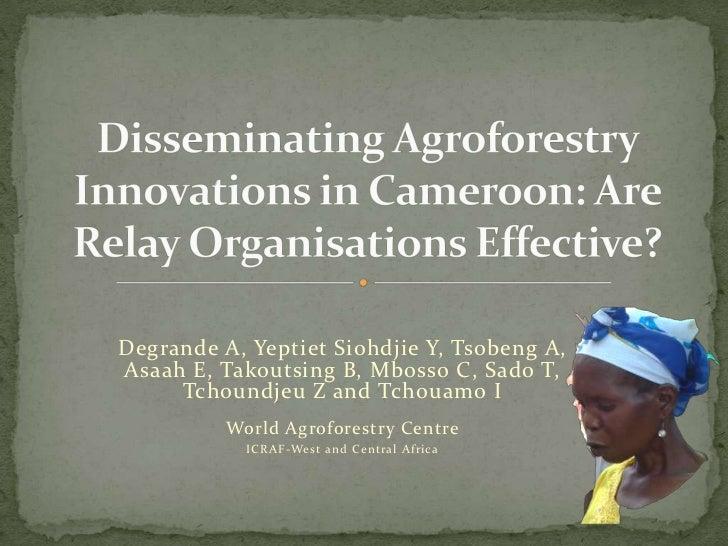 Degrande A, Yeptiet Siohdjie Y, Tsobeng A,Asaah E, Takoutsing B, Mbosso C, Sado T,     Tchoundjeu Z and Tchouamo I        ...