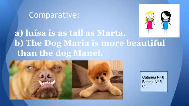Comparative: a) luísa is as tall as Marta. b) The Dog Maria is more beautiful than the dog Manel. Catarina Nº 6 Beatriz Nº...