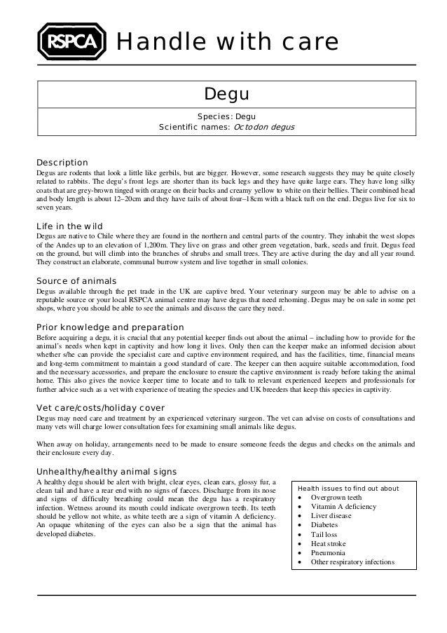 Degu's
