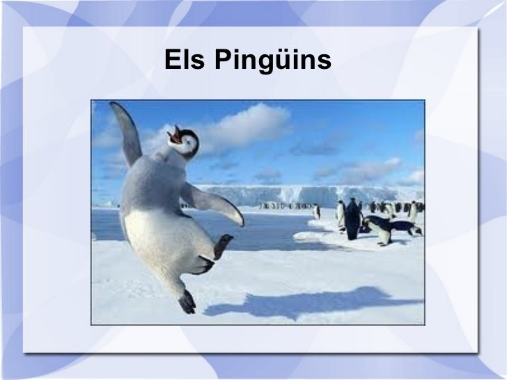Els Pingüins