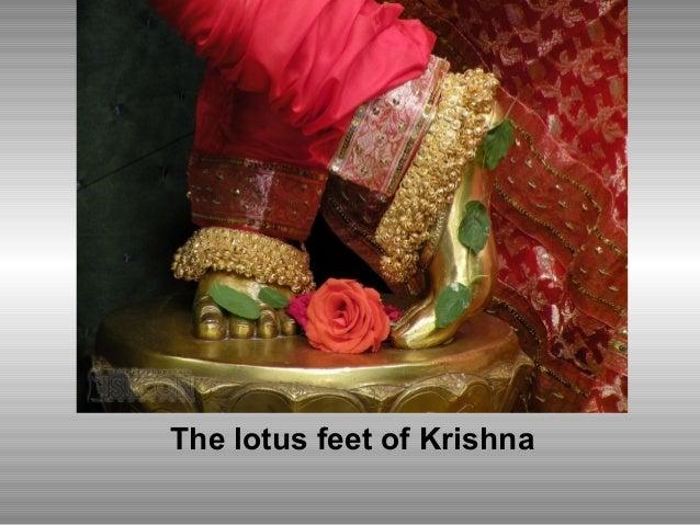 The lotus feet of Krishna
