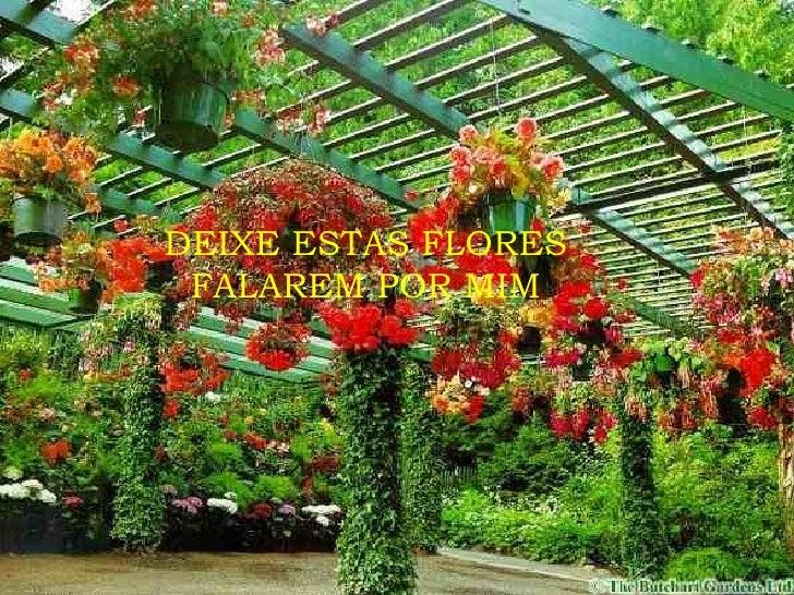 DEIXE ESTAS FLORES FALAREM POR MIM