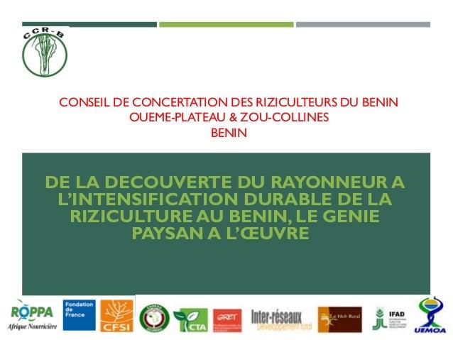 CONSEIL DE CONCERTATION DES RIZICULTEURS DU BENIN OUEME-PLATEAU & ZOU-COLLINES BENIN DE LA DECOUVERTE DU RAYONNEUR A L'INT...