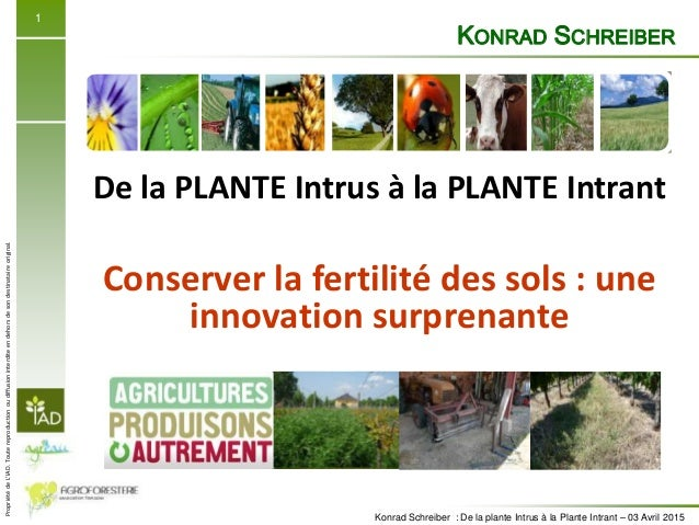 PropriétédeL'IAD.Toutereproductionoudiffusioninterditeendehorsdesondestinataireoriginal. Konrad Schreiber : De la plante I...