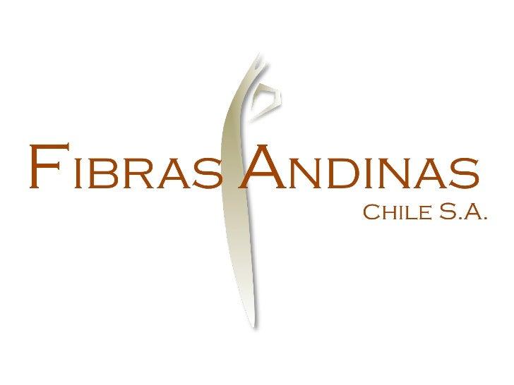 FIBRAS ANDINAS CHILE