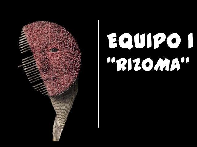 "EQUIPO 1""RIZOMA"""