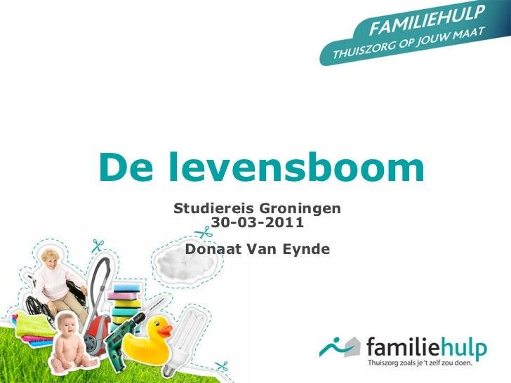 De levensboom   Studiereis Groningen       30-03-2011    Donaat Van Eynde
