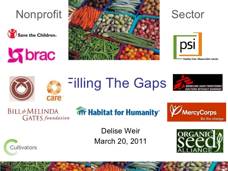 Filling The Gaps  Delise Weir March 20, 2011 Nonprofit Sector Cultivators