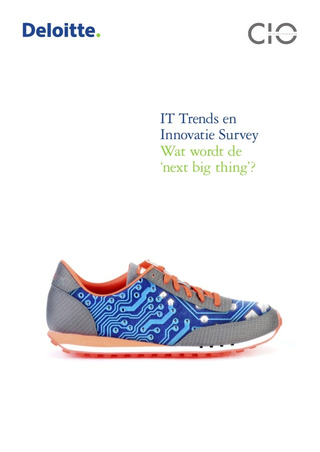 IT Trends en Innovatie Survey Wat wordt de 'next big thing'?
