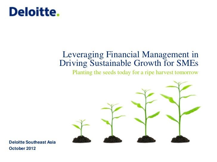 Leveraging Financial Management in                          Driving Sustainable Growth for SMEs                           ...