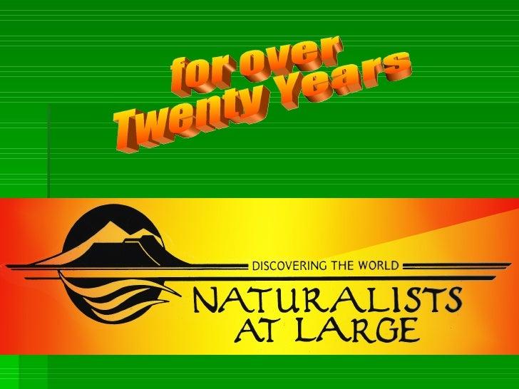 Camp Del Oro - Naturalists at Large