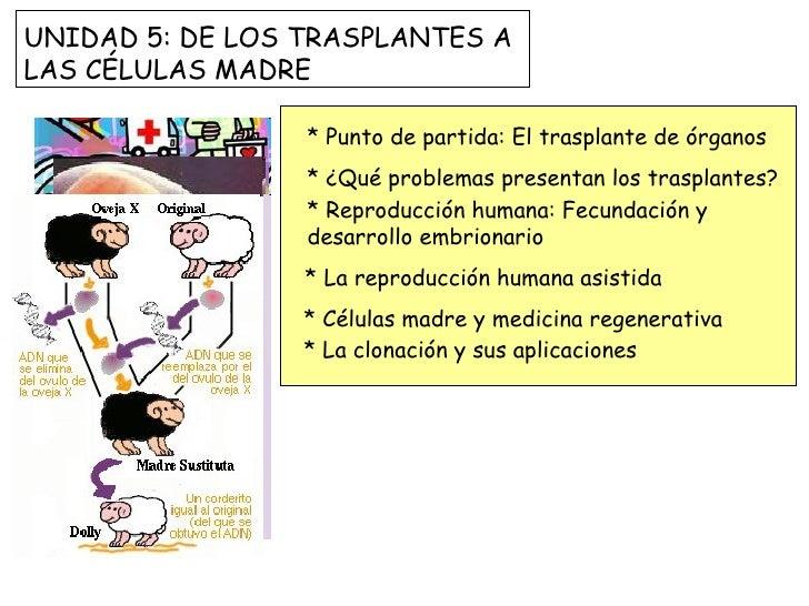 * Punto de partida: El trasplante de órganos * ¿Qué problemas presentan los trasplantes?  * Reproducción humana: Fecundaci...