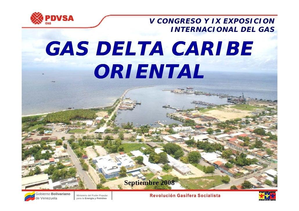 Proyecto Gas Delta Caribe Oriental