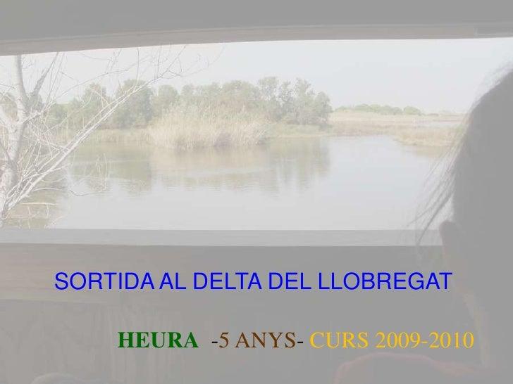 Delta heura