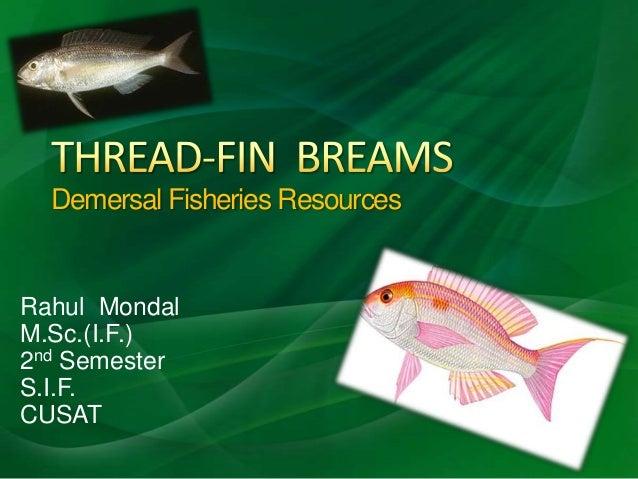 Demersal Fisheries ResourcesRahul MondalM.Sc.(I.F.)2nd SemesterS.I.F.CUSAT