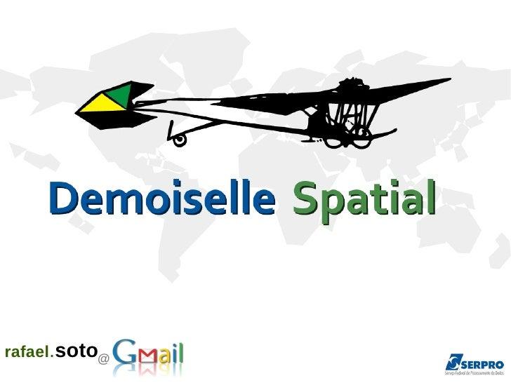 Demoiselle Spatial Latinoware 2011
